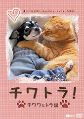 DVD『チワトラ!』ジャケ写イメージ